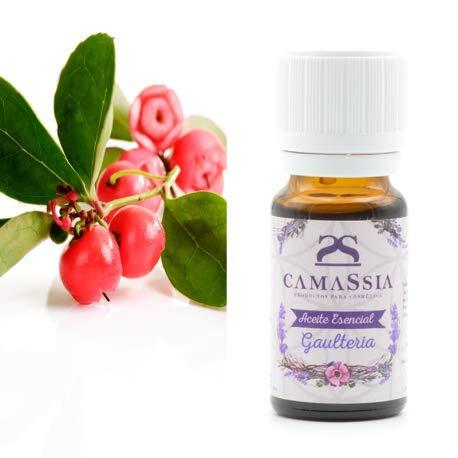 Aceite esencial gaulteria (Wintergreen)