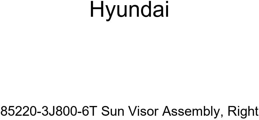 Genuine Hyundai 85220-3J800-6T Sun All items in the store Visor Popular products Assembly Right