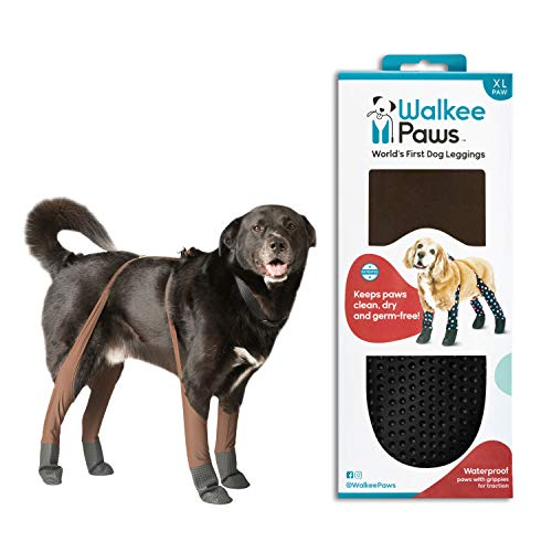 Walkee Paws New Dog Leggings, The World's First Dog Leggings That are Dog Shoes, Dog Boots & Dog...