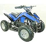 FamilyGoKarts Youth Electric ATV Kids Sport Quad for Children with Reverse - Blue