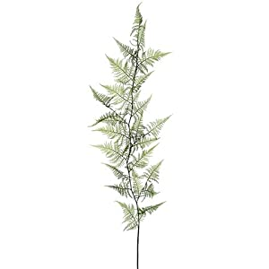 Silk Plants Direct Hanging Asparagus Fern (Pack of 12)