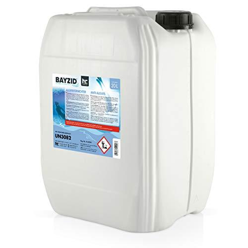 Höfer Chemie 10 L Pool Algenvernichter - Präventives Anti Algenmittel für Schwimmbad & Pool - gegen Algen