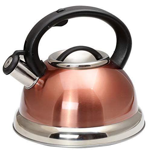 Creative Home Alexa Stainless Steel Whistling...