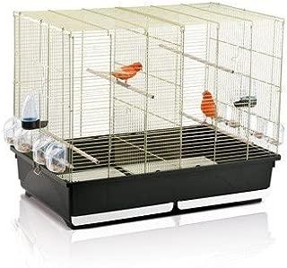 Amazon.es: Rodentia-es - Jaulas para pájaros / Jaulas y accesorios ...