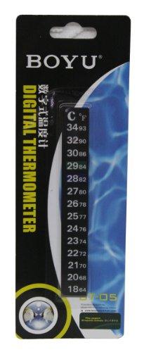 Termometro Digital 12D Blist