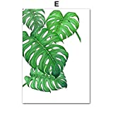 TYLPK Grüne Monstera Big Leaf Tropische Pflanze Wandkunst Leinwand Gemälde E3 50X70 cm No Framed