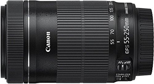 Canon望遠ズームレンズEF-S55-250mmF4-5.6ISSTMAPS-C対応EF-S55-250ISSTM