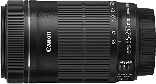 Canon EF-S 55-250mm f/4-5.6 IS STM Telephoto Zoom Lens (Import Model)