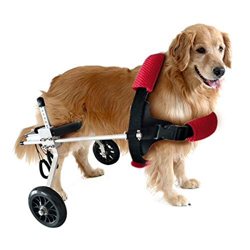 Tick Tocking Wheels Dog Wheelchair - Suitable for any large, medium and small dog 2-40 lbs - Veterinarian Approved - Wheelchair for Back Legs