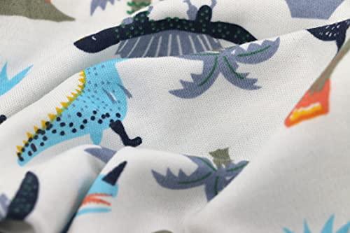 SAMGU Pijama para Niños Algodón Dos Piezas Dinosaurio Ropa Pantalón y Camiseta de Manga Larga para Dormir Conjunto Niño Verano para 2-8 Años