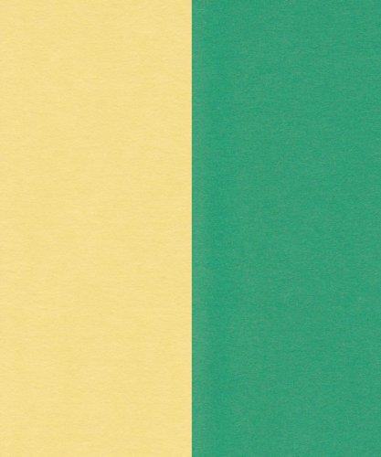 エスケント 両面色画用紙 八切 レモン&緑 100枚 290068