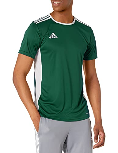 adidas Men's Entrada Jersey, Collegiate Green/White, Small