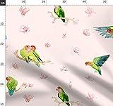 Turteltauben, Liebesvögel, Vögel Und Blumen, Papageien