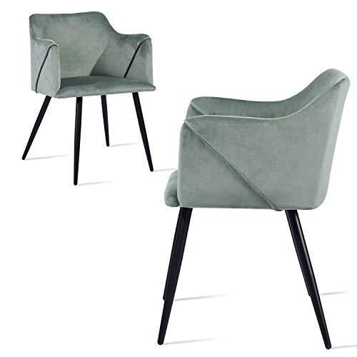 Dining Chairs Kitchen Chairs Home Office Chairs Set of 2 Modern Sturdy Dining Room Chairs with Fabric Cushion Seat Back, Mid Century Living Room Chairs Armchairs with Black Metal Legs, Cactus