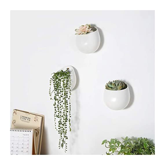 Mkono 4 Inch Wall Mounted Planter Round Ceramic Hanging Plant Holder Decorative Flower Display Vase Succulent Pots for Indoor Plants, Set of 3, White (Plants NOT Included) 2 Unique Design: Round shape plant vase finished with matte white, its glazed apperance looks in modern. Minimalist style and elegant design add decorative touch to any home and office decor, to brighten up your living space with indoor plants. Great gift idea for plant lover! Multipurpose Use: Improved opening is large enough for planting small succulents, ball cactus, herbs, air plants, water plants, or artificial plants. Functional for storage small items, such as placing makeup brush, pencils, mark pen, tableware, or toiletries in different scenes. Versatile Wall Decor: A hole in the back allows to hang on wall displaying your favourite plants. As a wonderful wall decor, prefect for using at home, office, shop. Additional ornament for hanging in bedroom, living room, kitchen, restroom, or entryway.