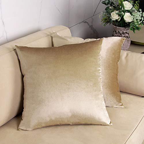 GuildreyTex Throw Pillow Covers, Cozy Velvet Square, Soft Solid Decorative Cushion Pillowcases for Couch, Bed and Car, 18 x 18 Inches Champagne, Pack of 2