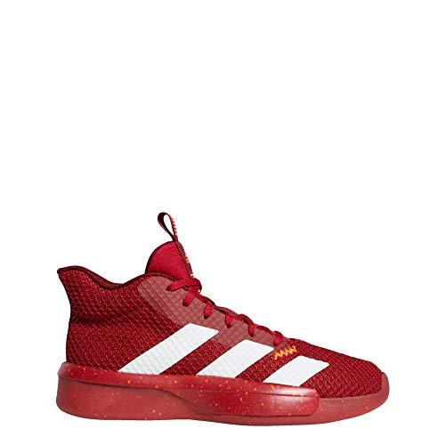 Adidas Pro Next 2019, Zapatillas de Baloncesto Hombre, Rouge Foncã Blanc Rouge Bordeaux, 48 EU
