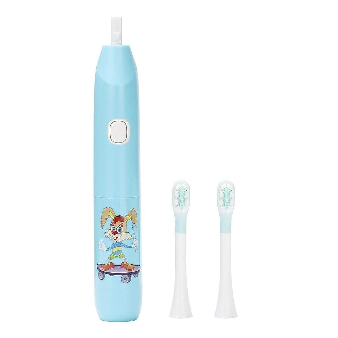 アーティスト大使ハーブ電動歯ブラシ、再充電可能な歯ブラシの大人および子供のための口頭ヘルスケアのための深いクリーニングのきれいなブラシの頭部(青)