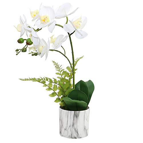 Olrla Planta de Flores de orquídeas Artificiales en Maceta de marmoleado, decoración de Toque Real, Phalaenopsis Bonsai, Mesa de Comedor, Centro de Mesa, Adorno de baño (Blanco 2)