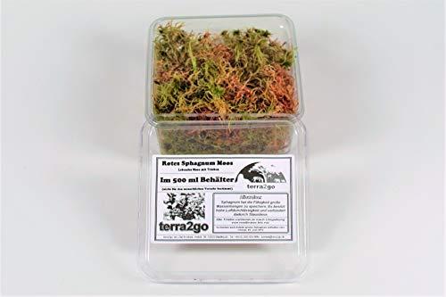 terra2go Rotes Sphagnum Moos lebend im 500 ml Behälter