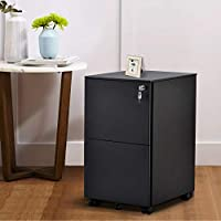 Merax Black 2-Drawers File Cabinet Fully Assembled Except Wheels
