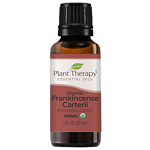 Plant Therapy Organic Frankincense Carterii Essential Oil 100% Pure,...