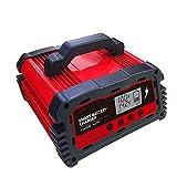 CUIJU Cargador de batería para automóvil Cargador/mantenedor de batería Inteligente automático de 12 V con Pantalla LCD Reparación de Pulso Cargador Universal de 24 V, DC200