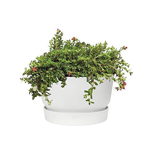 elho greenville Bowl 33 – Runde Blumenschale in Weiß mit Wasserreservoir für den Outdoor-Bereich – Frostbeständig – Ø 33 x H 20 cm