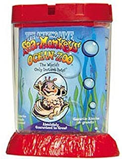 Schylling Sea Monkeys Ocean Zoo Colors May Vary by Schylling