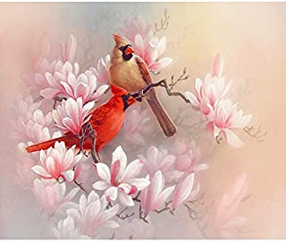 Diy Oil Painting Paint by Number Kit,Merry Christmas Cardinal,16X20 Inch
