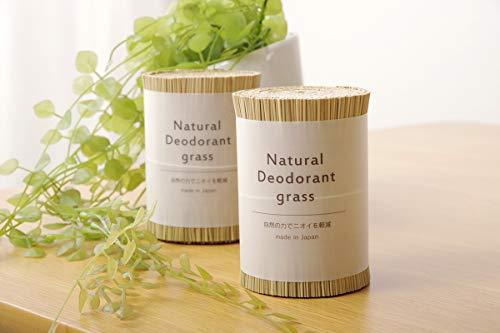 イケヒコ 日本製 国産 消臭剤 い草 天然素材 い草消臭デオグラス 帯ホワイト 約10×6.5cm丸 #7539909