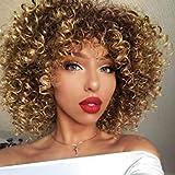 BLISSHAIR parrucca capelli umani ricci Parrucca Donna Capelli Veri Afro kinky curly human hair wigs 150% density no lace front wig parrucche capelli veri corti 10inch