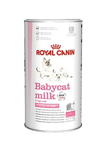 ROYAL CANIN, Katzenmilch für kleine Katzen, 300 g