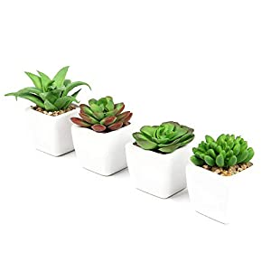 Silk Flower Arrangements Flojery 4pcs Artificial Succulents Plants with Pot Mini Realistic Fake Succulents Ceramic Planter for Desk, Office, Living Room, and Home Decoration (Green/White Ceramic Pots)