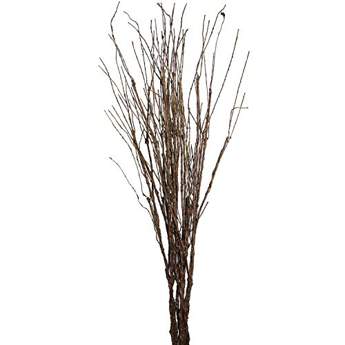 MISSWARM 10 pcs Artificial Green Twig Curly Willow Branch Spray 29.5 Artificial Branches Floral Home Decor for Home Office Party Hotel Restaurant Patio or Yard Decoration