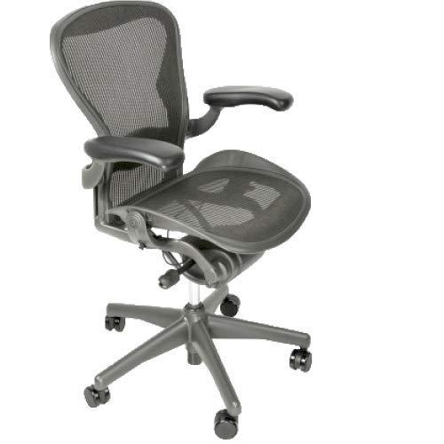 Aeron Fully Loaded Size B Adjustable Lumbar Pad (Renewed) Beverly Hills Chairs