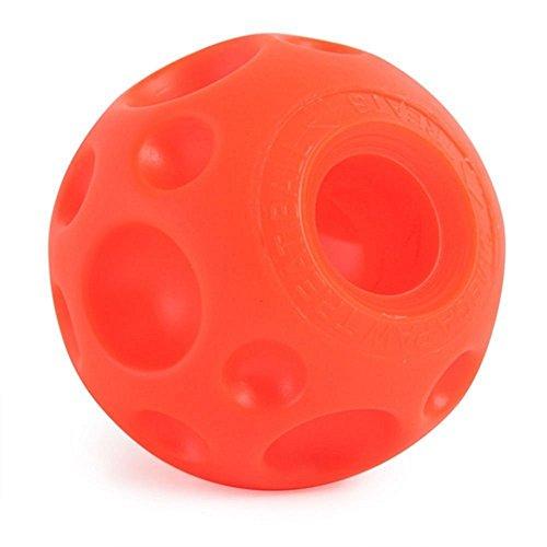 Tricky Treats Dog Toy Size: Medium (3.5) by Omega Paw