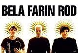 1art1 40470 Die Ärzte - Bela, Farin, Rod Poster (91 x 61