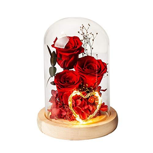 Dongxiao Flores Naturales Adornos Flores Frescas Reales En Cúpula Vidrio Eternal Hecho A Mano Nunca Marchito Flores Eternas para San Valentín Adornos (Color : Red)