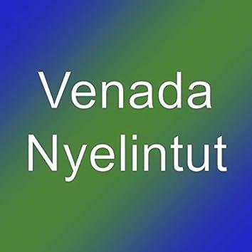 Nyelintut