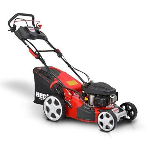 HECHT Benzin-Rasenmäher 543 SWE Rasenmäher + Elektro-Start Funktion (2,6 kW (3,5 PS), Schnittbreite 43 cm, 50 Liter Fangkorbvolumen, Radantrieb)