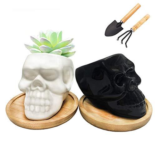 MIDANGGU 2 Pack Skull Shape Tiny Ceramic Pot Planter for Cactus Succulent Herb Plant Office Desk Windowsill Decoration Pen Holder Gift