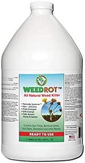 WeedRot Natural Weed Killer RTU Gallon
