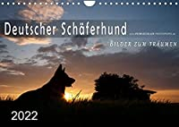 Deutscher Schaeferhund / CH-Version (Wandkalender 2022 DIN A4 quer): Sie haben mich verzaubert ... (Monatskalender, 14 Seiten )