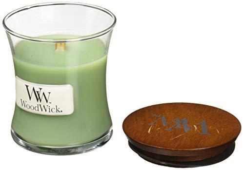 Woodwick witte wilg mos kleine pot kaars
