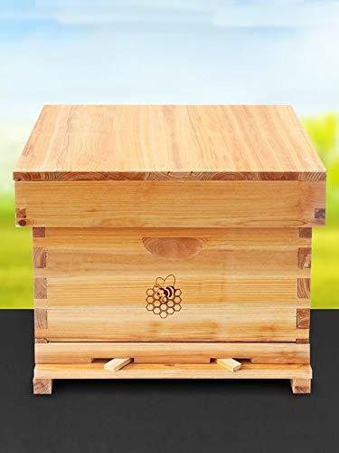 JKGHK Bienenstock Komplett Beehive Kit, Wachs beschichtet Bee Hive Inklusive Rahmen und Beeswax Beschichtete Foundation Blatt