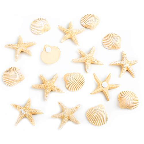 100 Stück Mini Echt Seestern Maritime Handwerk Deko Aquarium 1~2cm Tischdeko