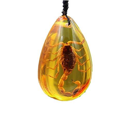 TYGJB Insekt Stein Natürliche Scorpions Einbeziehung Bernstein Baltischen Anhänger Halskette Home Dekorative Stein Hochzeit Party Reise Geschenk
