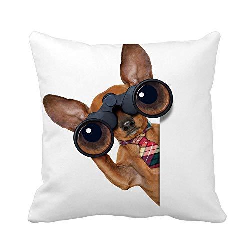 Throw Pillow Cover Divertido Dachshund Sausage Dog Binoculares Buscando Mirar y Observar Funda de Almohada Funda de Almohada Cuadrada Decorativa para el hogar Funda de cojín