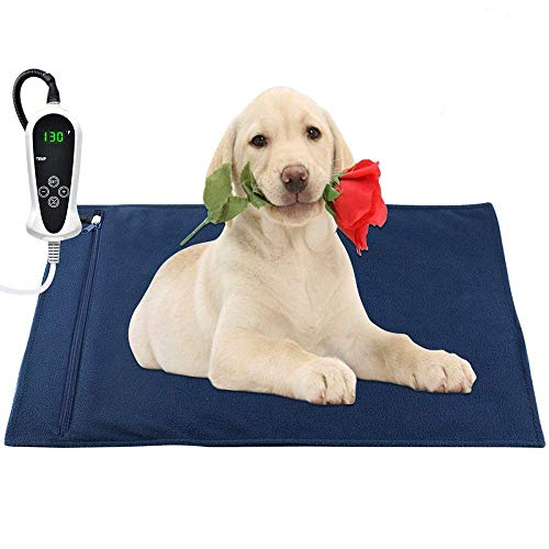 Large Dog Pads Walmart
